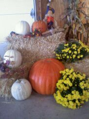 dyi fall home decorating idea available at Keil's Produce and Greenhouse in Swanton Ohio