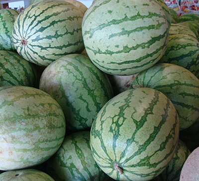 Aphrodite - Indiana cantaloupe available during the summer at Keil's Produce and Greenhouse in Swanton, Ohio